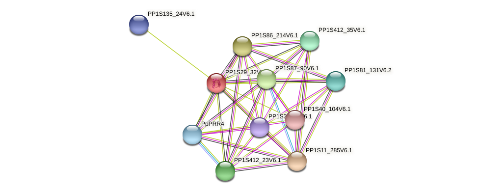 PP1S29_32V6.1 protein (Physcomitrella patens) - STRING interaction network