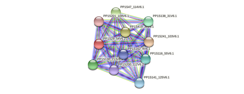 PP1S29_54V6.1 protein (Physcomitrella patens) - STRING interaction network