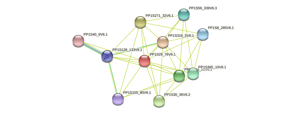 PP1S29_76V6.1 protein (Physcomitrella patens) - STRING interaction network