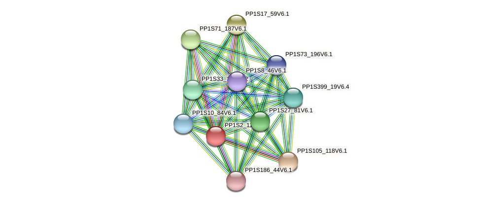PP1S2_113V6.1 protein (Physcomitrella patens) - STRING interaction network