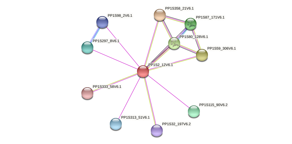 PP1S2_12V6.1 protein (Physcomitrella patens) - STRING interaction network