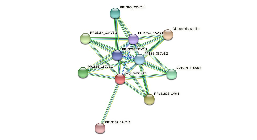 PP1S2_133V6.1 protein (Physcomitrella patens) - STRING interaction network