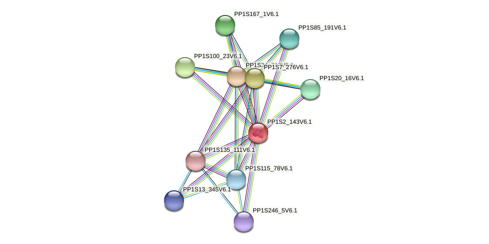 PP1S2_143V6.1 protein (Physcomitrella patens) - STRING interaction network
