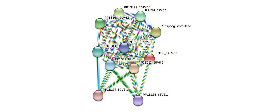 PP1S2_145V6.1 protein (Physcomitrella patens) - STRING interaction network