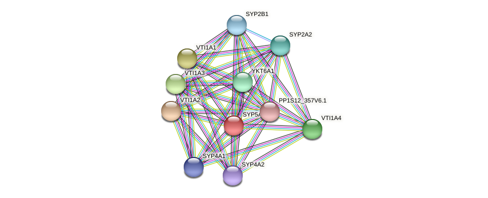 SYP5A2 protein (Physcomitrella patens) - STRING interaction network
