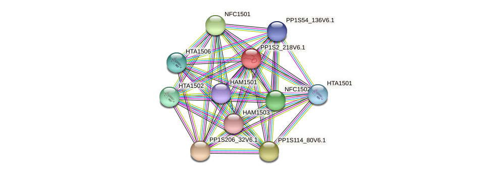 PP1S2_218V6.1 protein (Physcomitrella patens) - STRING interaction network