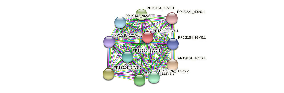 PP1S2_242V6.1 protein (Physcomitrella patens) - STRING interaction network