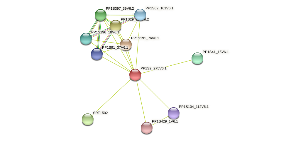 PP1S2_275V6.1 protein (Physcomitrella patens) - STRING interaction network