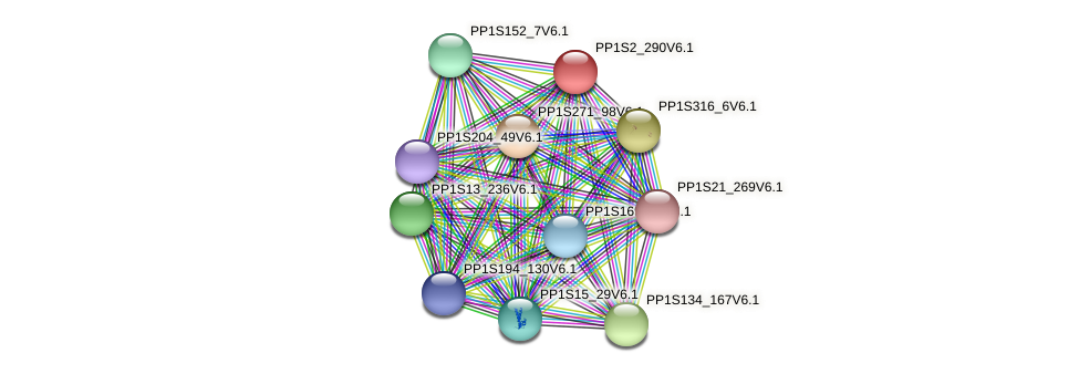 PP1S2_290V6.1 protein (Physcomitrella patens) - STRING interaction network