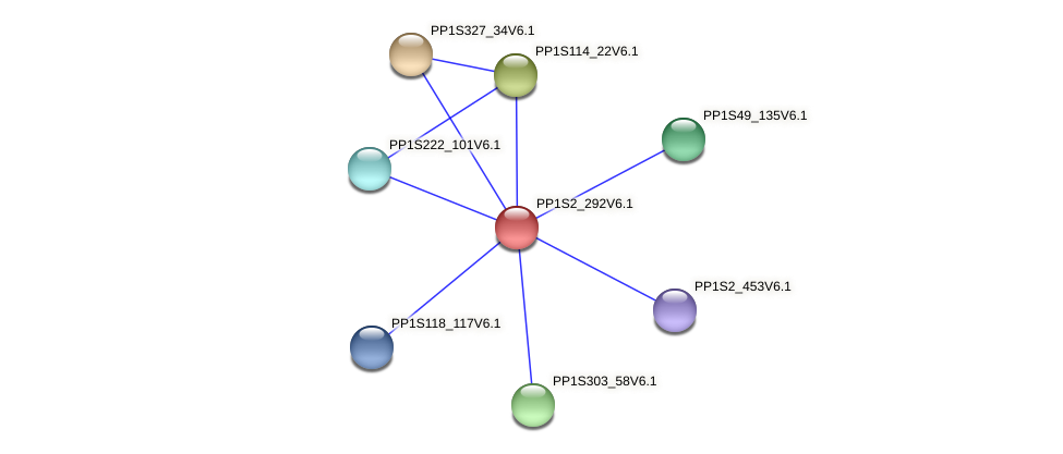 PP1S2_292V6.1 protein (Physcomitrella patens) - STRING interaction network