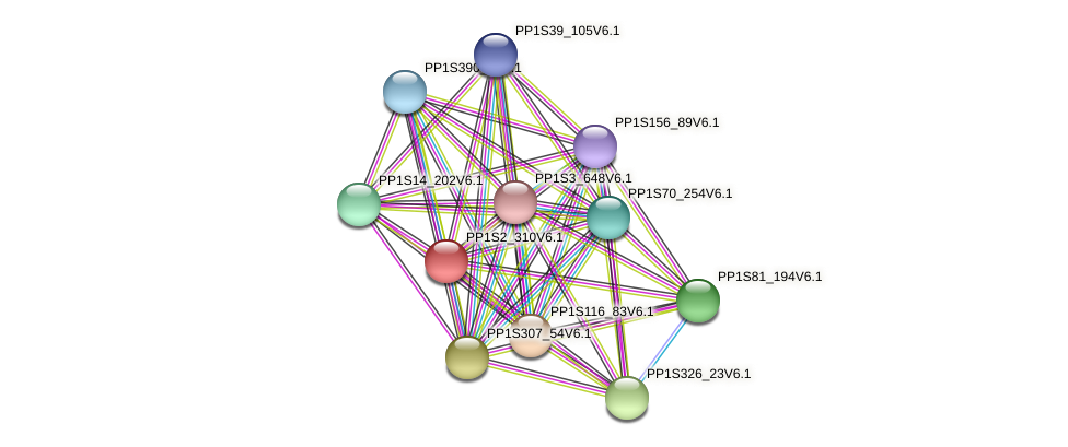 PP1S2_310V6.1 protein (Physcomitrella patens) - STRING interaction network