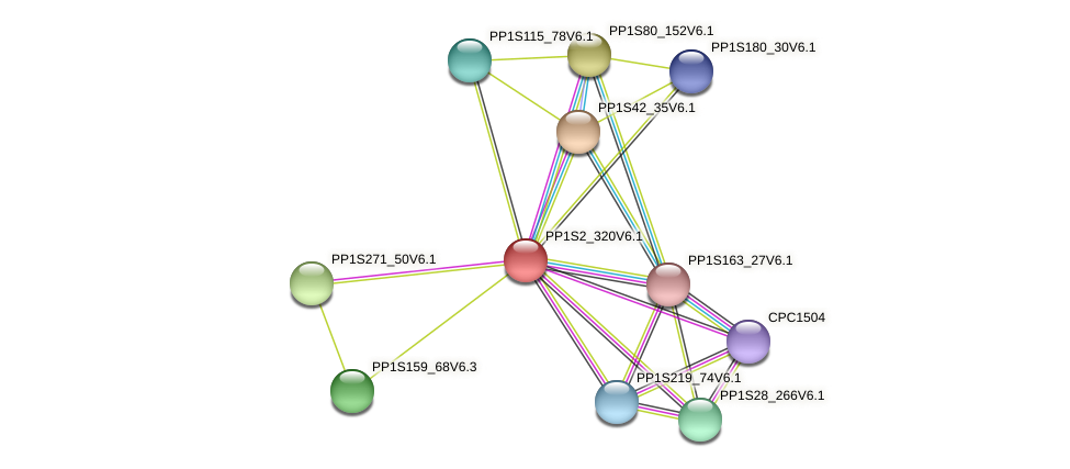 PP1S2_320V6.1 protein (Physcomitrella patens) - STRING interaction network