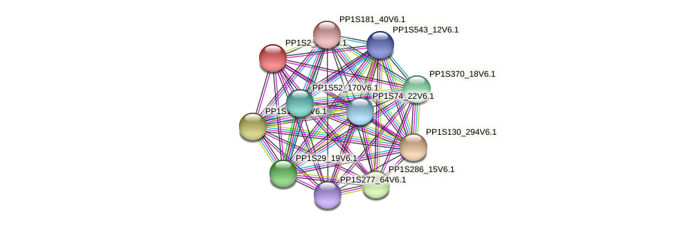 PP1S2_341V6.1 protein (Physcomitrella patens) - STRING interaction network