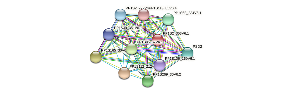 PP1S2_353V6.1 protein (Physcomitrella patens) - STRING interaction network