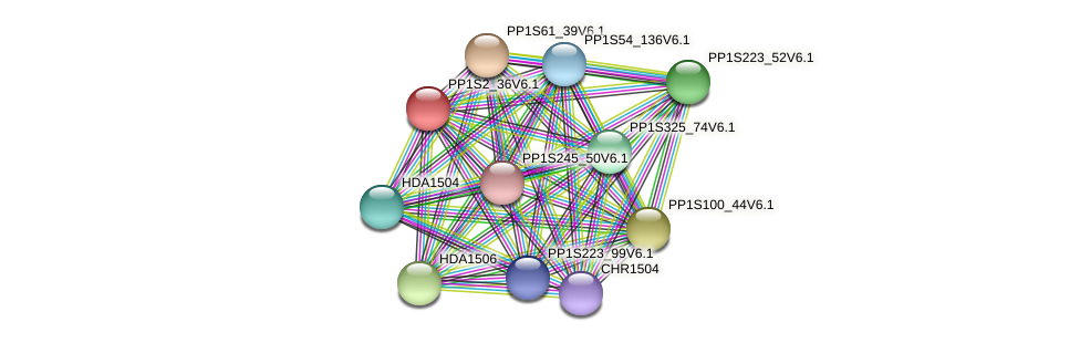 PP1S2_36V6.1 protein (Physcomitrella patens) - STRING interaction network