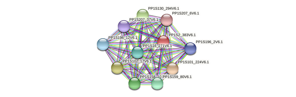 PP1S2_383V6.1 protein (Physcomitrella patens) - STRING interaction network