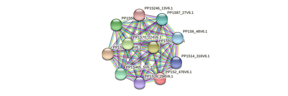 PP1S2_476V6.1 protein (Physcomitrella patens) - STRING interaction network