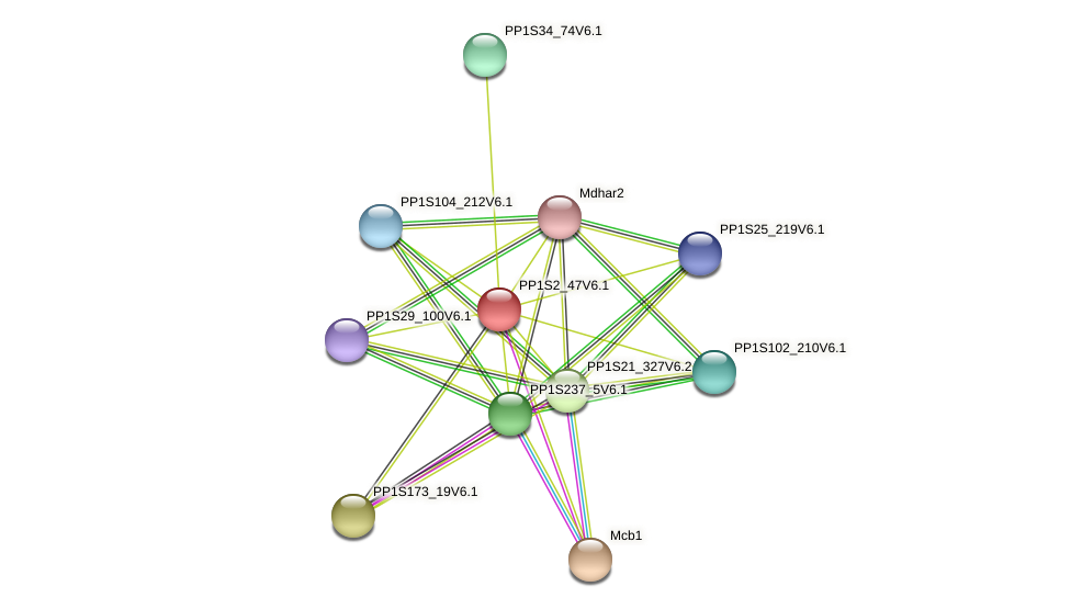 PP1S2_47V6.1 protein (Physcomitrella patens) - STRING interaction network