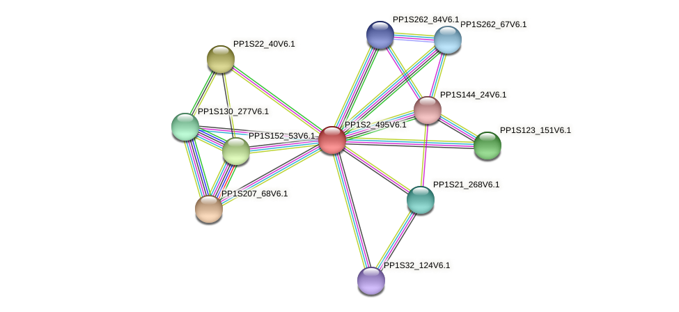 PP1S2_495V6.1 protein (Physcomitrella patens) - STRING interaction network