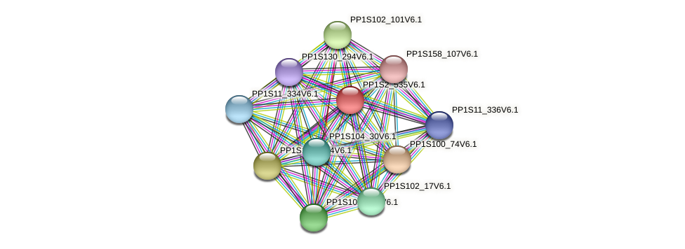 PP1S2_535V6.1 protein (Physcomitrella patens) - STRING interaction network