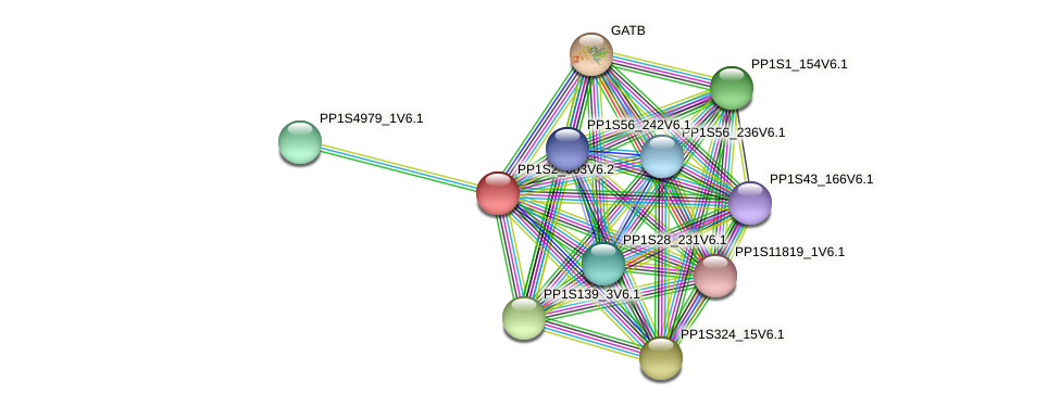 PP1S2_603V6.2 protein (Physcomitrella patens) - STRING interaction network