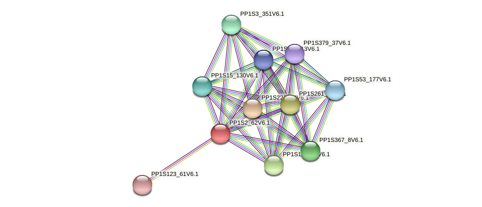 PP1S2_62V6.1 protein (Physcomitrella patens) - STRING interaction network