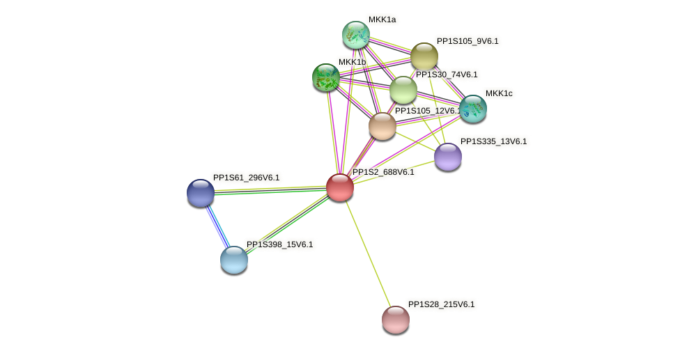 PP1S2_688V6.1 protein (Physcomitrella patens) - STRING interaction network