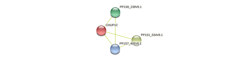 PP1S2_699V6.1 protein (Physcomitrella patens) - STRING interaction network