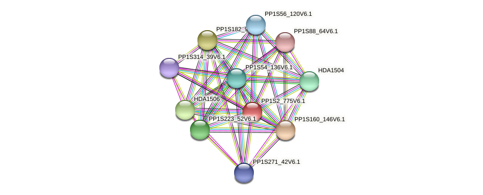 PP1S2_775V6.1 protein (Physcomitrella patens) - STRING interaction network