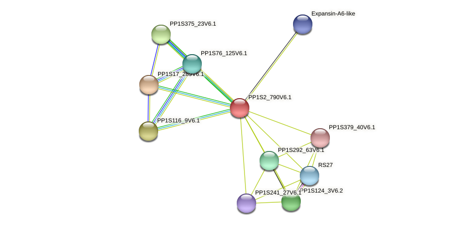 PP1S2_790V6.1 protein (Physcomitrella patens) - STRING interaction network