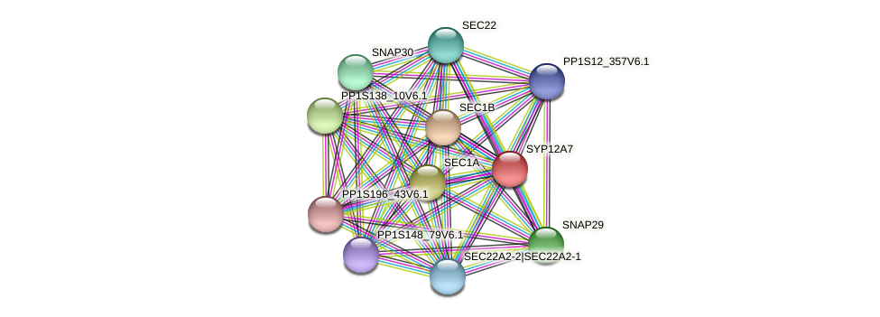 SYP12A7 protein (Physcomitrella patens) - STRING interaction network