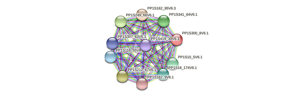 PP1S300_8V6.1 protein (Physcomitrella patens) - STRING interaction network