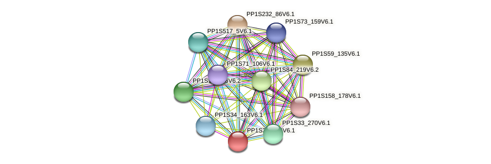 PP1S301_15V6.1 protein (Physcomitrella patens) - STRING interaction network