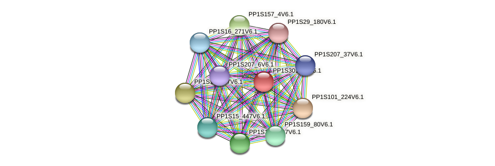 PP1S301_39V6.1 protein (Physcomitrella patens) - STRING interaction network