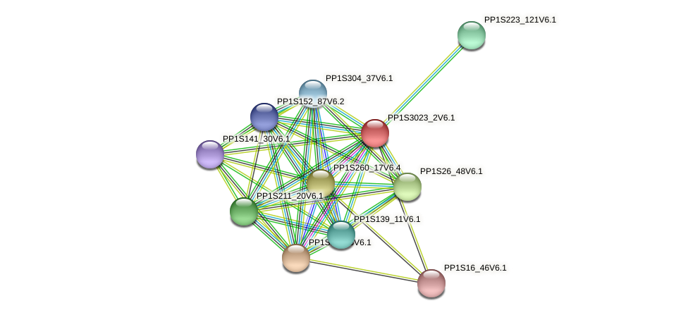 PP1S3023_2V6.1 protein (Physcomitrella patens) - STRING interaction network