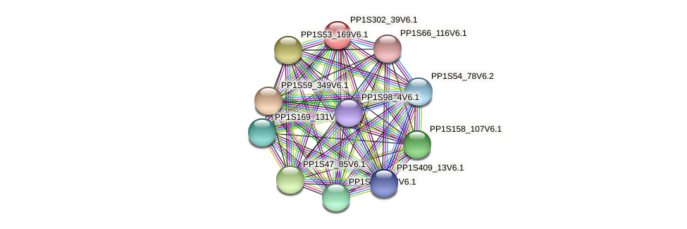 PP1S302_39V6.1 protein (Physcomitrella patens) - STRING interaction network