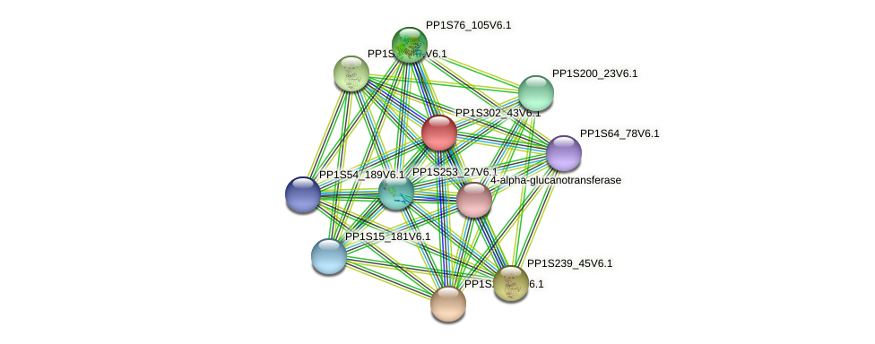 PP1S302_43V6.1 protein (Physcomitrella patens) - STRING interaction network