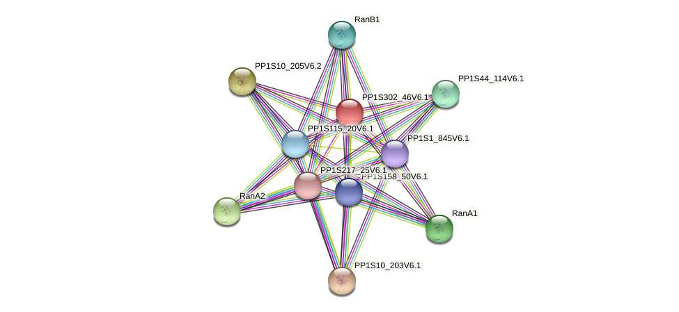 PP1S302_46V6.1 protein (Physcomitrella patens) - STRING interaction network