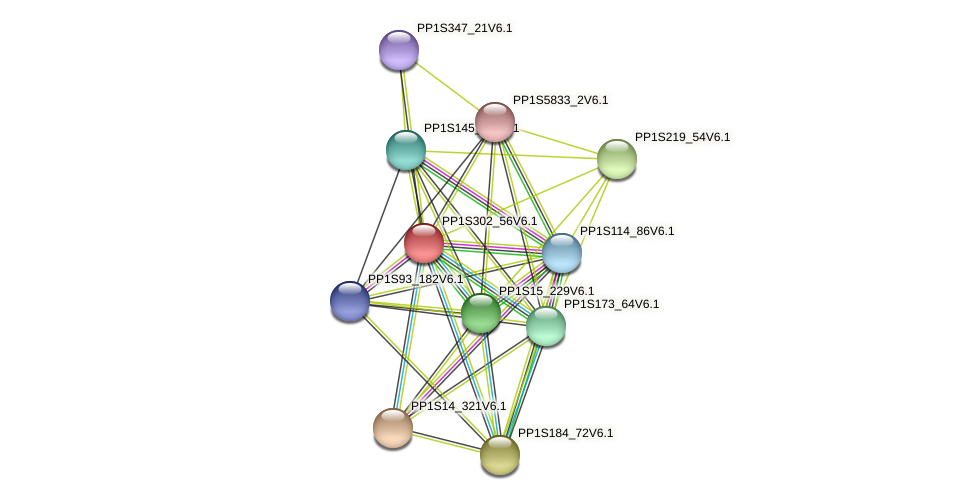 PP1S302_56V6.1 protein (Physcomitrella patens) - STRING interaction network
