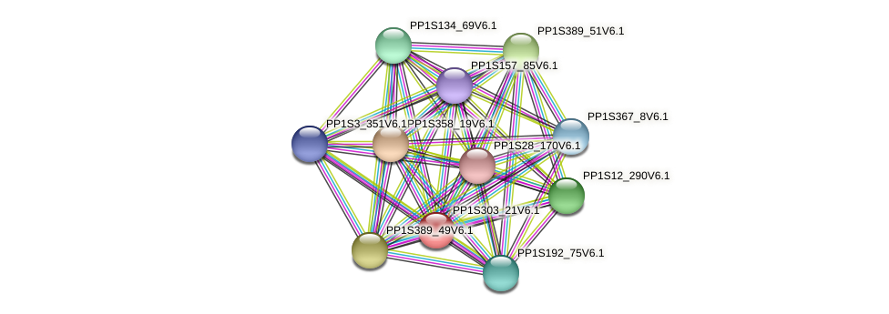 PP1S303_21V6.1 protein (Physcomitrella patens) - STRING interaction network
