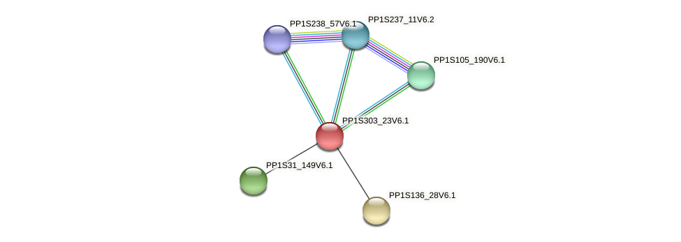 PP1S303_23V6.1 protein (Physcomitrella patens) - STRING interaction network