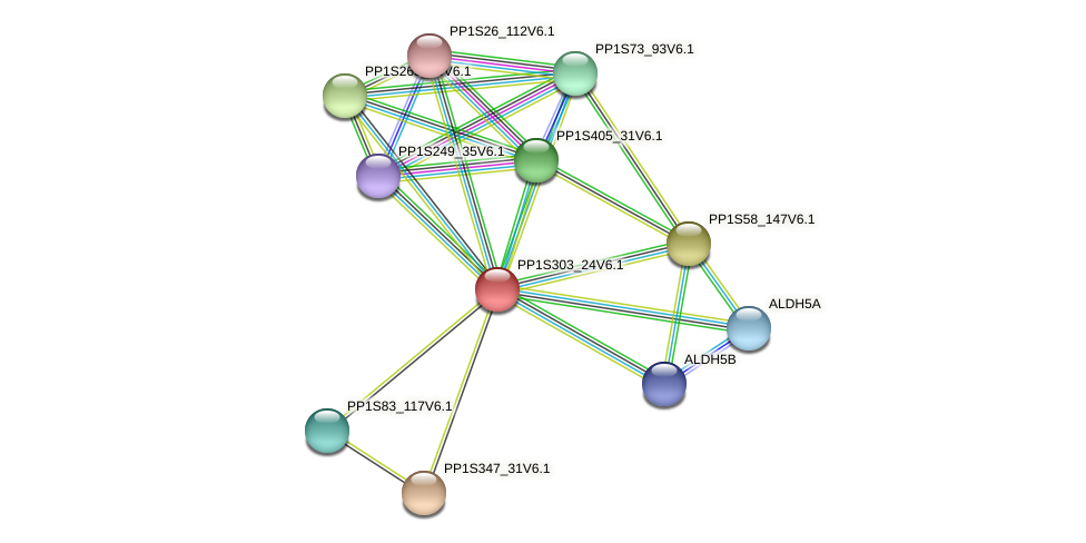 PP1S303_24V6.1 protein (Physcomitrella patens) - STRING interaction network
