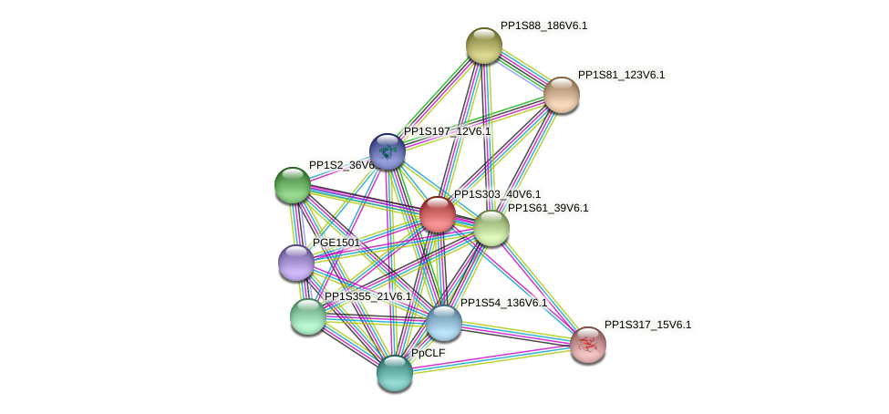 PP1S303_40V6.1 protein (Physcomitrella patens) - STRING interaction network