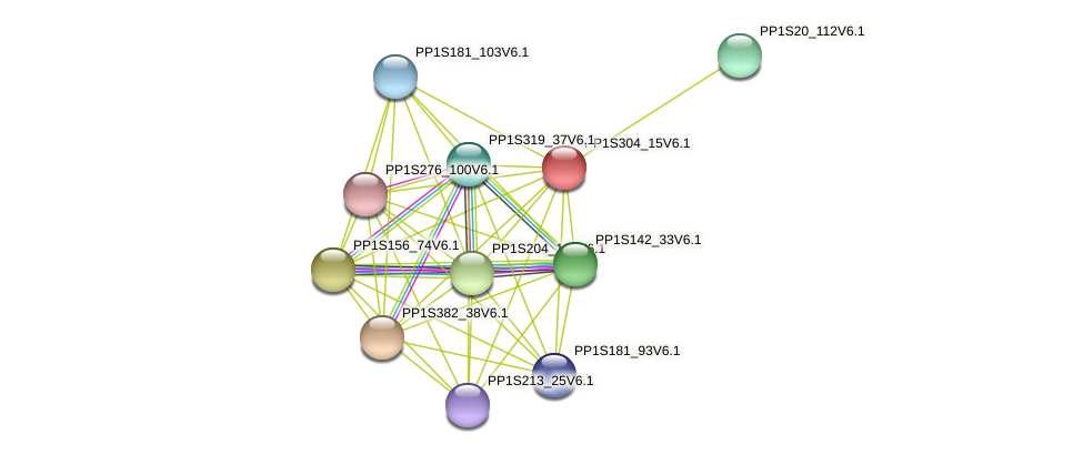 PP1S304_15V6.1 protein (Physcomitrella patens) - STRING interaction network