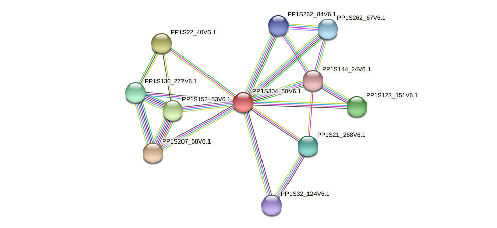 PP1S304_50V6.1 protein (Physcomitrella patens) - STRING interaction network