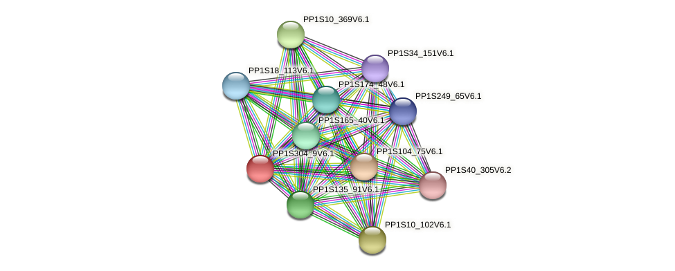 PP1S304_9V6.1 protein (Physcomitrella patens) - STRING interaction network