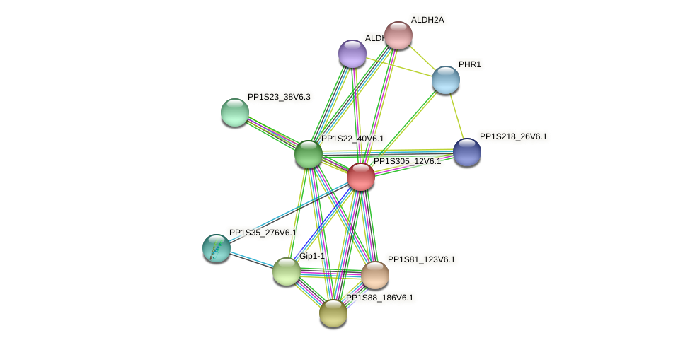 PP1S305_12V6.1 protein (Physcomitrella patens) - STRING interaction network