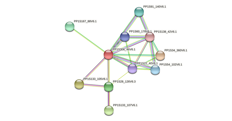 PP1S306_46V6.1 protein (Physcomitrella patens) - STRING interaction network
