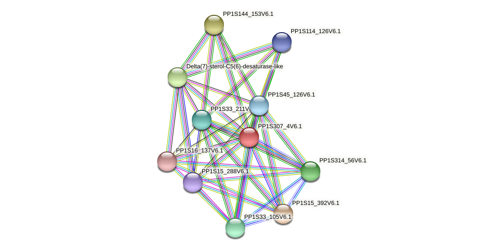 PP1S307_4V6.1 protein (Physcomitrella patens) - STRING interaction network