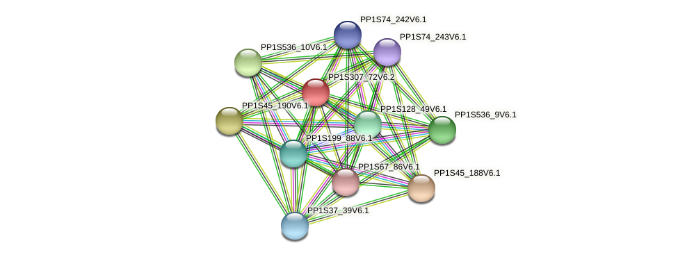 PP1S307_72V6.2 protein (Physcomitrella patens) - STRING interaction network
